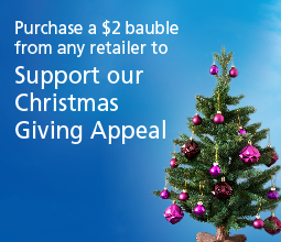 Christmas 2016 giving appeal